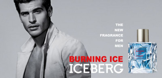 Iceberg Burning Ice - Туалетна вода (тестер) - 2